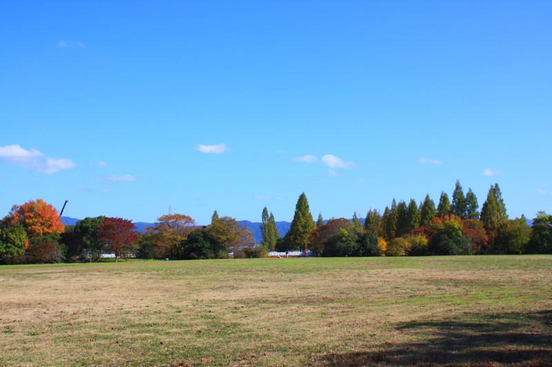 2012_11_162